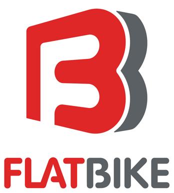 Flatbike Vertical Logo