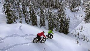 Blizzard Ride