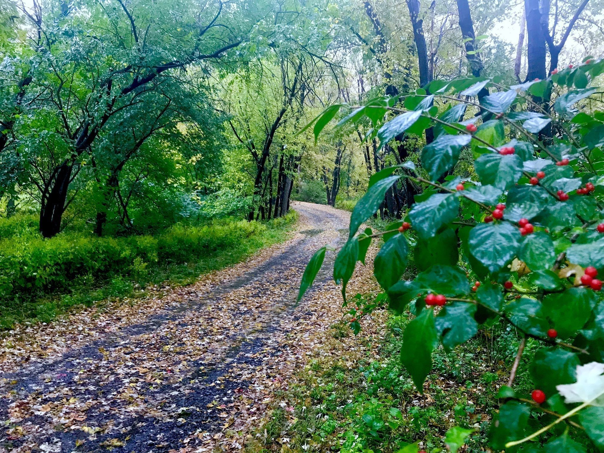 Getting outdoors: The 3,000 mile, 15-state biking greenway
