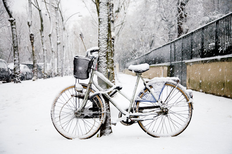 bike in the snow against a tree after winter riding
